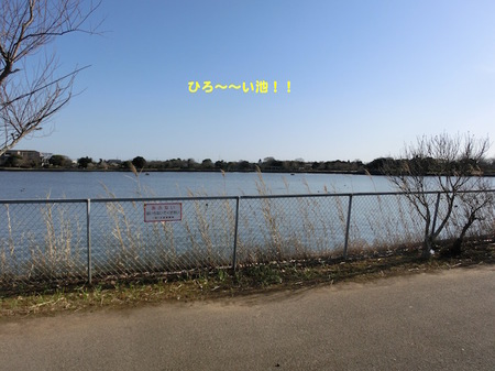 CIMG3261.jpg